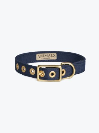 Navy & Brass All Weather Dog Collar by Animals In Charge