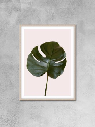 Monstera Leaf Photography Print by Love Your Space