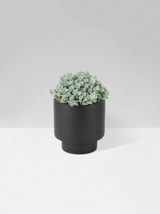 Black Podium Planter Medium by Zakkia