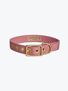 Dusty Pink & Brass All Weather Dog Collar by Animals In Charge