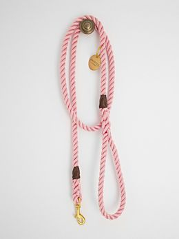 Rose Pink & Brass Rope Dog Leash by Animals In Charge