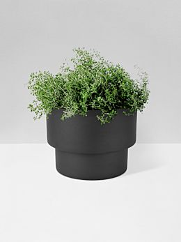 Black Podium Planter Large by Zakkia