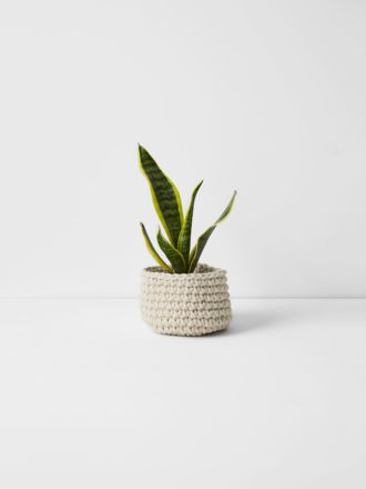 Crochet Basket - Low