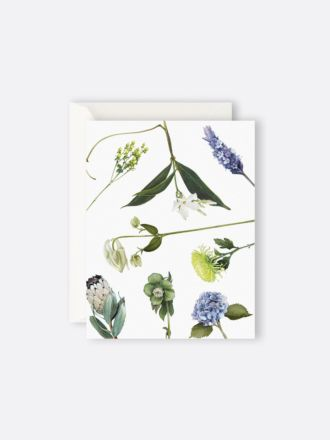 Botanicals by Father Rabbit