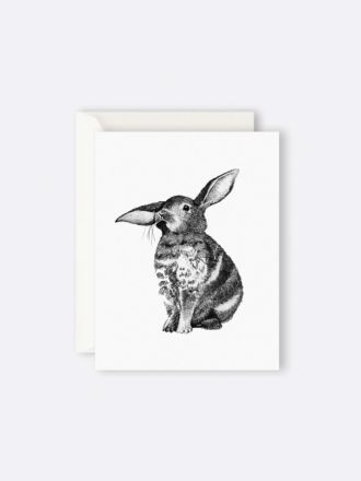Bunny by Father Rabbit