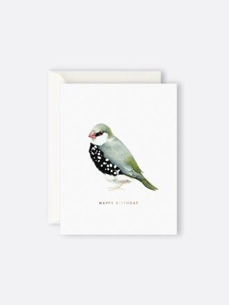 Happy Birthday Bird by Father Rabbit