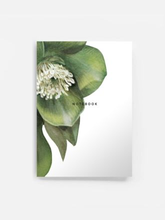 Hellebore Notebook by Father Rabbit