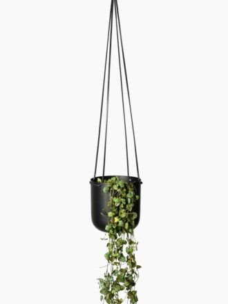 Black Hanging Planter Medium by Lightly
