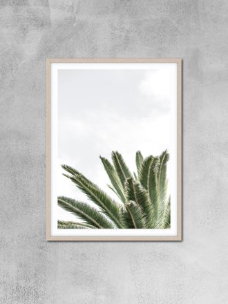 Palm 1 Photography Print by Love Your Space