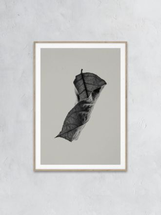 Paper Collective Sabi Leaf 04 Print - Norm Architects