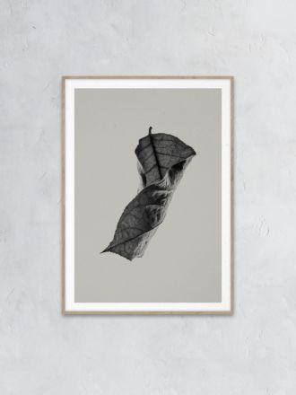 Sabi Leaf 04 Print by Norm Architects