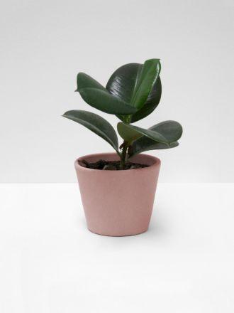 Serax Flower Pot - Medium - Blush Pink