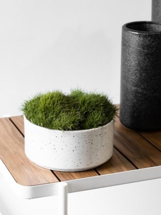 Ash Embers Bowl Planter Medium by Zakkia