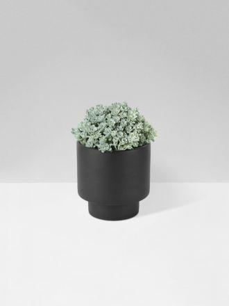 Black Podium Planter Medium by Zakkia