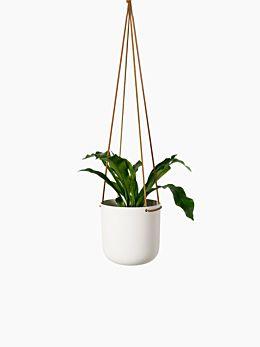 White Hanging Planter Medium by Lightly
