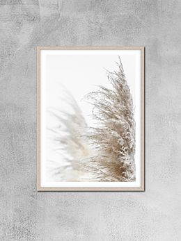 Pampas Grass Photography Print by Love Your Space