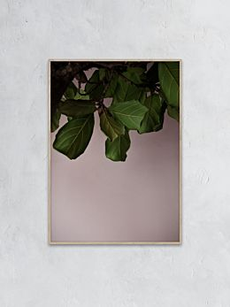Green Leaves Photography Print by Norm Architects