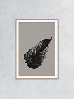 Sabi Leaf 01 Print by Norm Architects