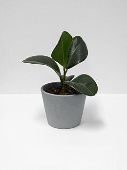 Serax Flower Pot - Medium - Grey