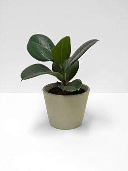 Serax Flower Pot - Medium - Khaki