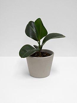 Serax Flower Pot - Medium - Mink