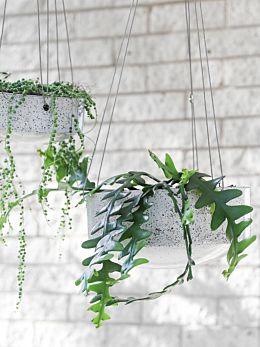 Ash Embers Hanging Planter Large by Zakkia
