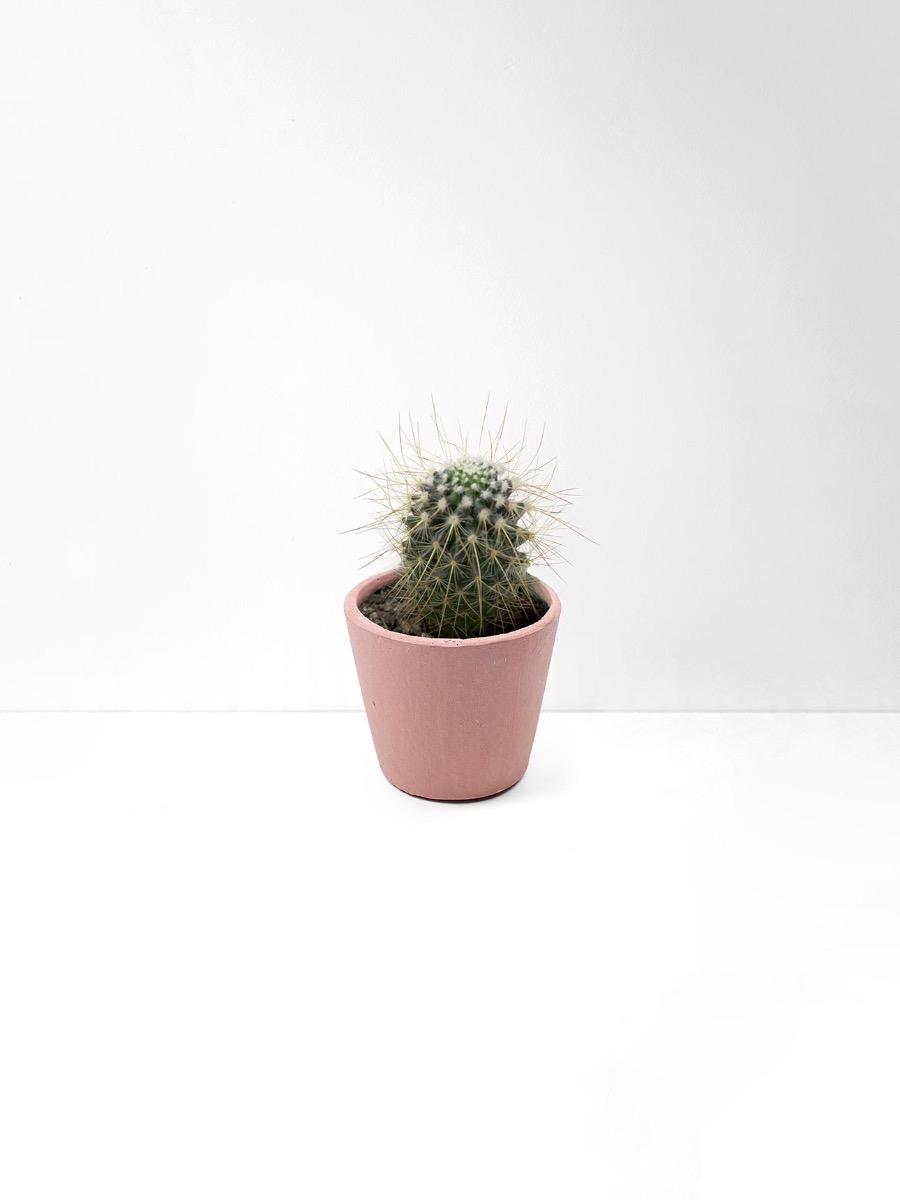 Serax Blush Pink Flower Pot Extra Small Aura Home